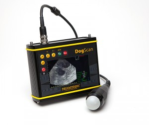 ultrasonograf-do-duzych-hodowli-psow